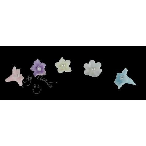 Flores miosotis diversos colores en porcelanicron
